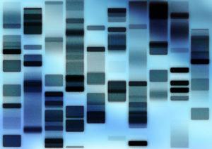 profil ADN police scientifique portrait robot