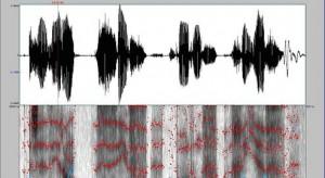 analyse voix batvox IRCGN police scientifique