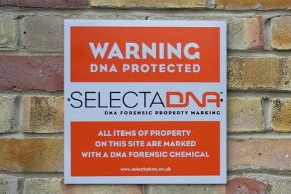 ADN de synthèse - SelectaDNA