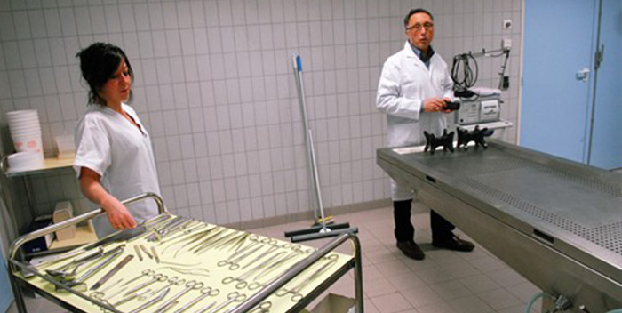 affaire gr gory l 39 autopsie police scientifique. Black Bedroom Furniture Sets. Home Design Ideas