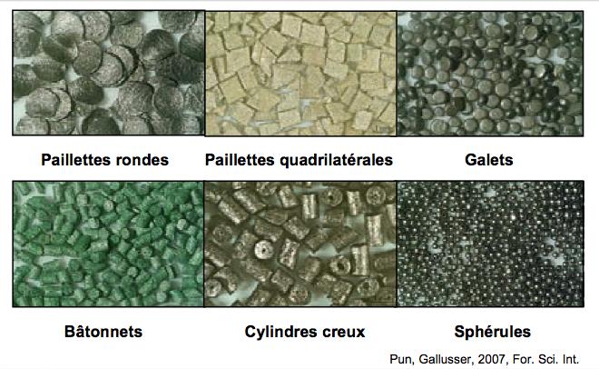 Morphologie des grains de poudre