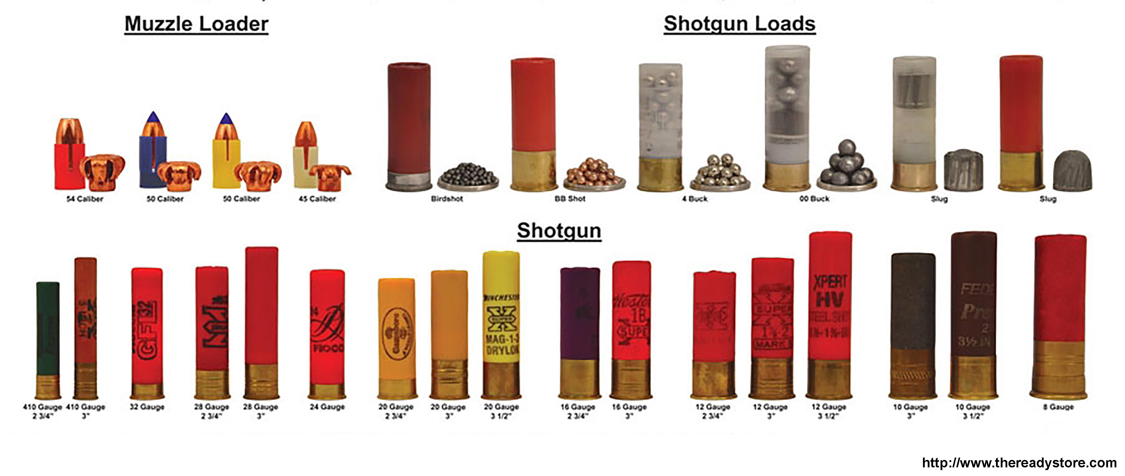 Exemple des différentes cartouches pour armes lisses