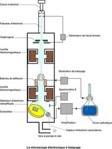 fonctionnement microscope électronique balayage résidus de tir
