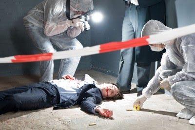 The Crimescene Unit Crimescene Unit Flatline