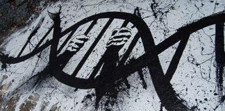 ADN FNAEG Prison