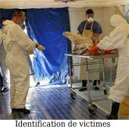 Identification-des-victimes - Police Scientifique - Organisation