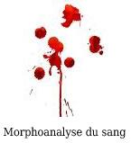 morphoanalyse du sang