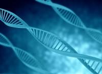 ADN police scientifique