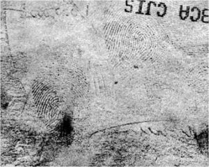 Révélateur physique traces digitales
