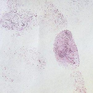 ninhydrine trace digitale